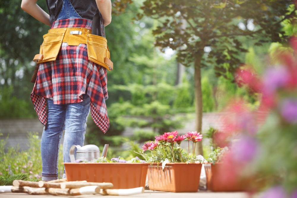 6 Tips for Keeping Your Yard Looking Beautiful All Year